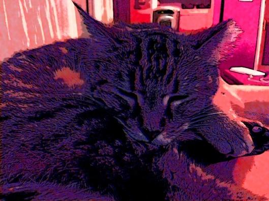 ma cat 2