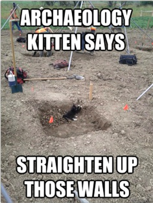 archaeology kitten 4